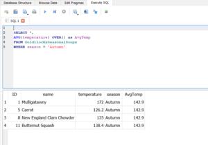 SQL Results 4